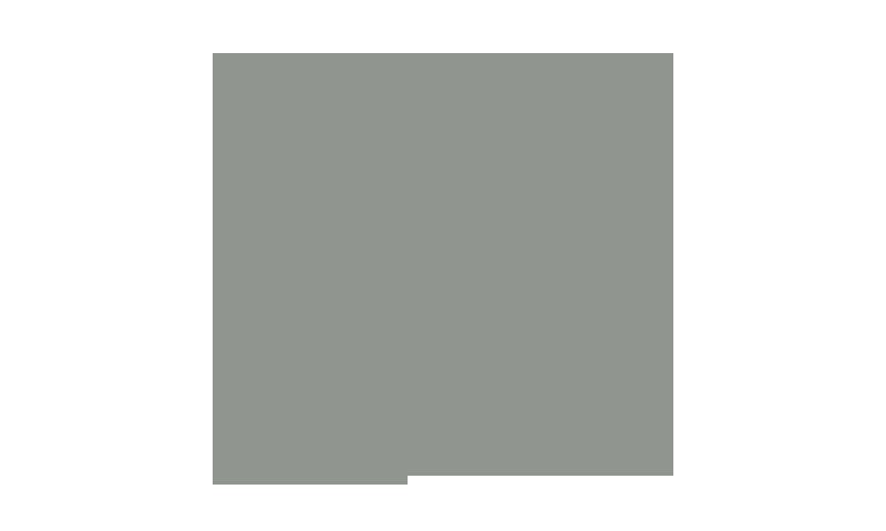 madia (1)
